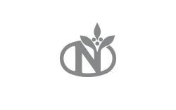 Logo Neumann Gruppe